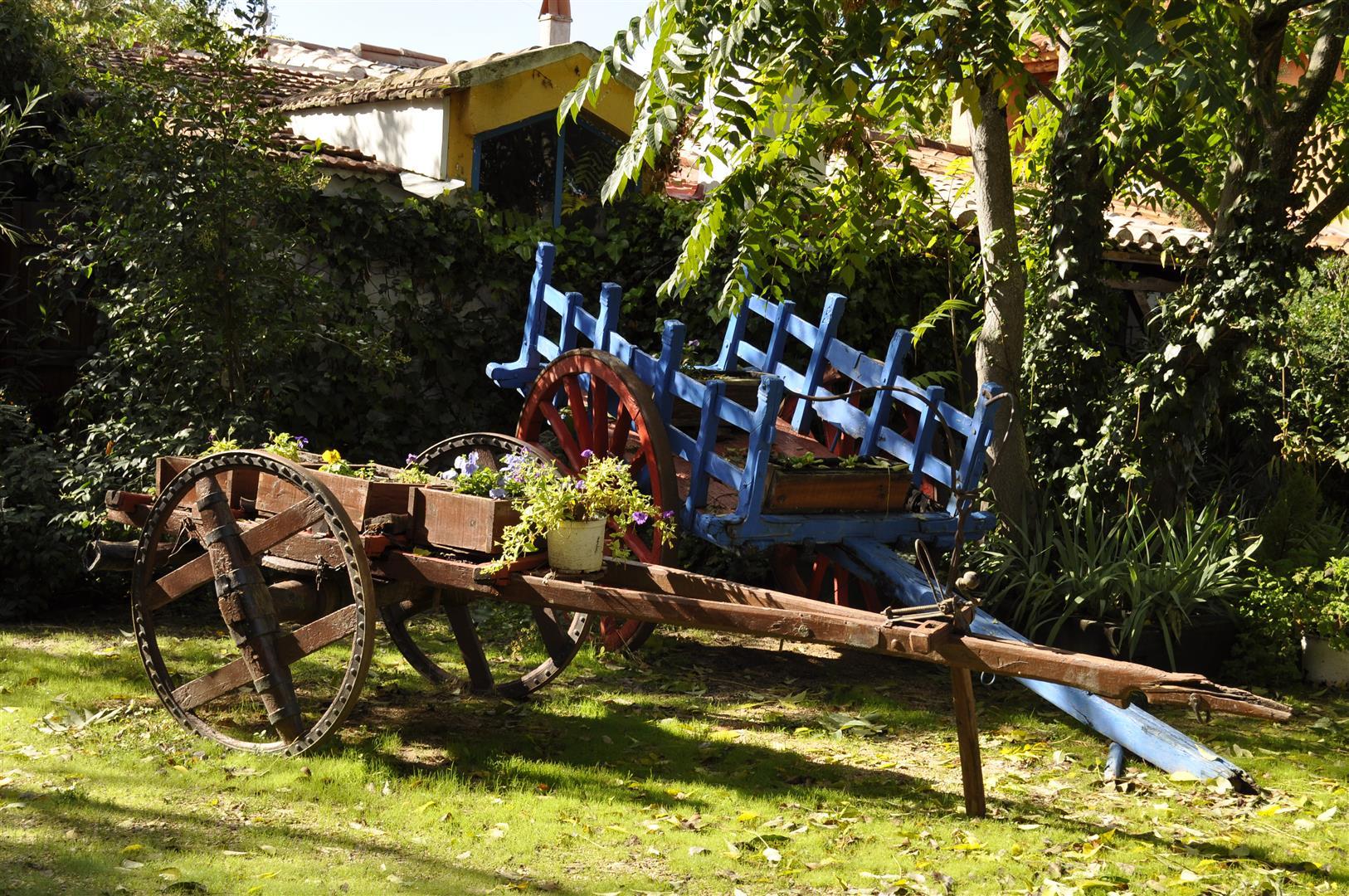 Jardines casas rurales las cavas for Casa rural jardin del desierto